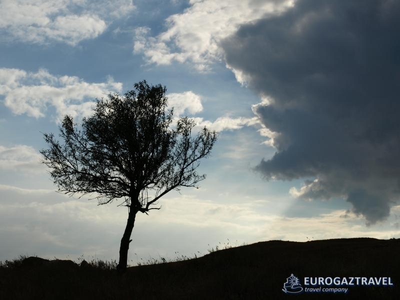 Феодосия-2012-139